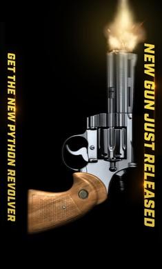 真实枪械2中文破解版