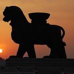 狮城棋牌下载送金币