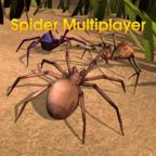 蜘蛛世界游戏