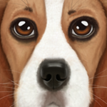 终极狗狗模拟器无限经验版