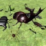 昆虫战斗模拟器无限金币版