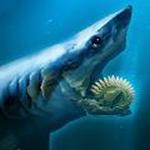 旋齿鲨模拟器