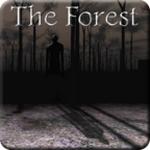 兰德里纳河的森林汉化版