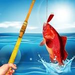 最后的钓鱼无限饵料版