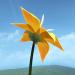 flower花官网版