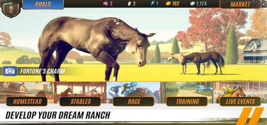 马匹养成竞技无限金币版