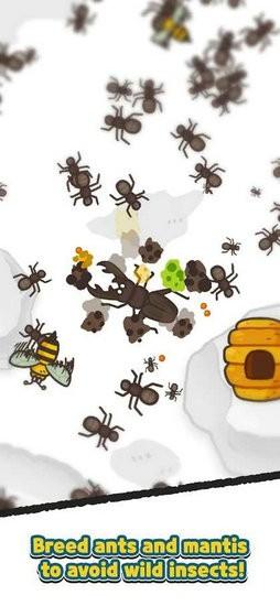 蚂蚁和螳螂帝国去广告版