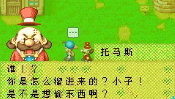 牧场物语矿石镇的伙伴们中文破解版
