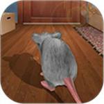 猫鼠之战安卓版
