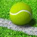 网球王牌安卓版