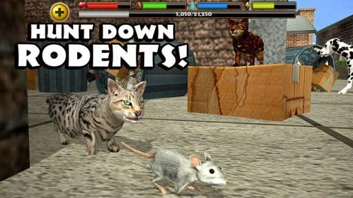 终极流浪猫模拟器无限生命版