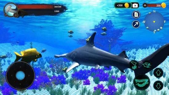 锤头鲨模拟器3d破解版无限金币