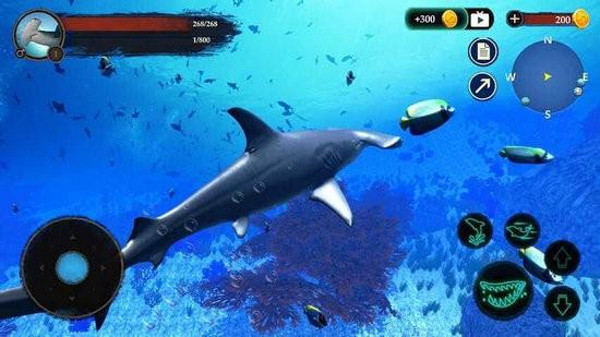 锤头鲨模拟器游戏下载