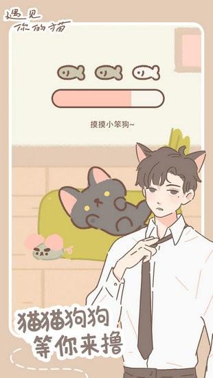 遇见你的猫破解版