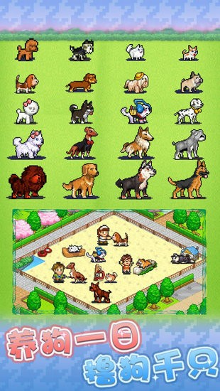 发现狗狗乐园安卓版