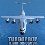 涡轮螺旋桨飞行模拟器中文版