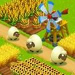 金农场种植