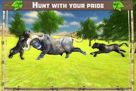 野豹家族丛林冒险