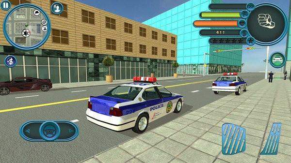警察追捕行动