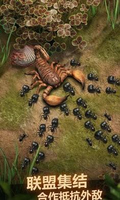 蚂蚁地下蚁国手机版下载