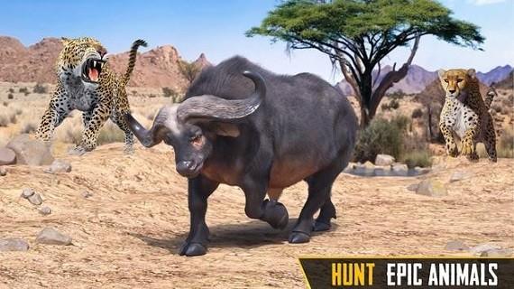 狙击手动物狩猎游戏中文版
