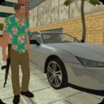 迈阿密都市模拟