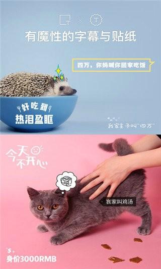 猫饼app免费版