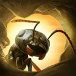 蚂蚁军团为了虫群