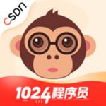 CSDN v4.17.2